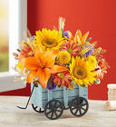 Harvest Hayride™ from Flowers by Ramon of Lawton, OK