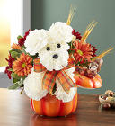 a-DOG-able® for Fall from Flowers by Ramon of Lawton, OK
