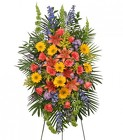VIBRANT FLORAL EXPRESSION from Flowers by Ramon of Lawton, OK