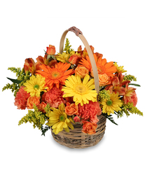 Cheergiver Basket from Flowers by Ramon of Lawton, OK