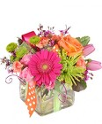 Happy Thoughts - Colorful from Flowers by Ramon of Lawton, OK