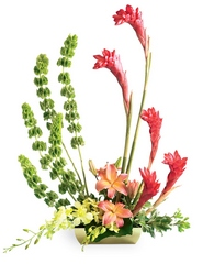 Touch of Tropics Arrangement from Flowers by Ramon of Lawton, OK