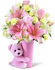 The FTD Baby Girl Big Hug Bouquet from Flowers by Ramon of Lawton, OK