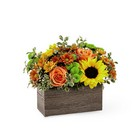 The FTD Happy Harvest Garden from Flowers by Ramon of Lawton, OK