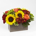 Happy Harvest Garden from Flowers by Ramon of Lawton, OK