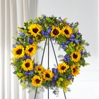 The FTD Bright Rays Wreath from Flowers by Ramon of Lawton, OK