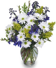 Lazy Daisy & Delphinium from Flowers by Ramon of Lawton, OK