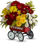 Baby's Wow Wagon from Flowers by Ramon of Lawton, OK