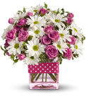 Teleflora's Polka Dots and Posies from Flowers by Ramon of Lawton, OK