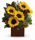 You're Golden Bouquet by Teleflora from Flowers by Ramon of Lawton, OK