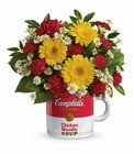 Campbell's Healthy Wishes by Teleflora from Flowers by Ramon of Lawton, OK