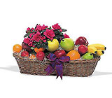 Plant and Fruit Basket from Flowers by Ramon of Lawton, OK