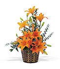 Asiatic Lilies from Flowers by Ramon of Lawton, OK