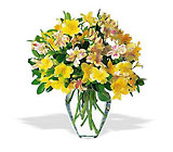 Sparkling Alstroemeria from Flowers by Ramon of Lawton, OK