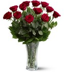 A Dozen Red Roses from Flowers by Ramon of Lawton, OK