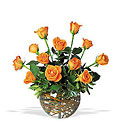 A Dozen Orange Roses from Flowers by Ramon of Lawton, OK