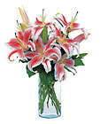 Lovely Lilies from Flowers by Ramon of Lawton, OK